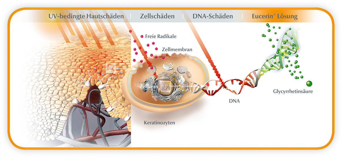 Eucerin - 3-Fach Sonnenschutz
