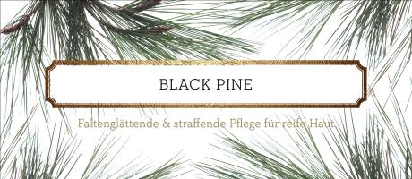 Produkte der Serie Black Pine von Korres
