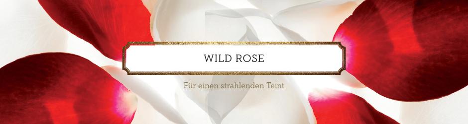 Wild Rose von Korres