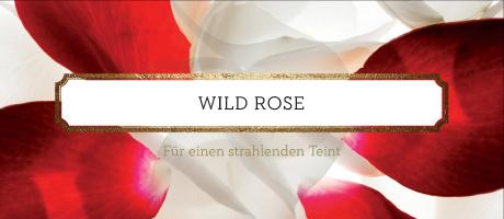 Produkte der Serie Wild Rose von Korres