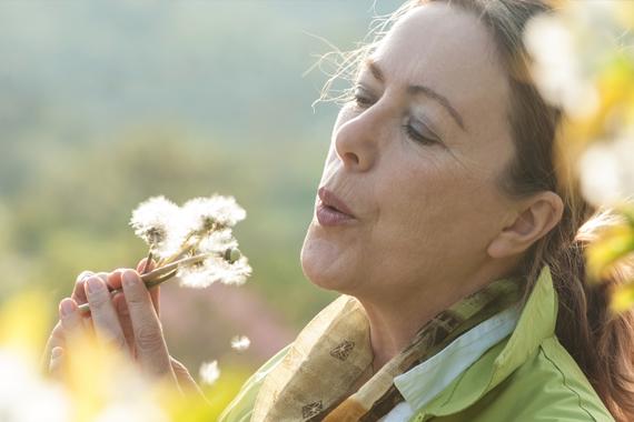 Teaser Produktseite Topkategorie Allergie