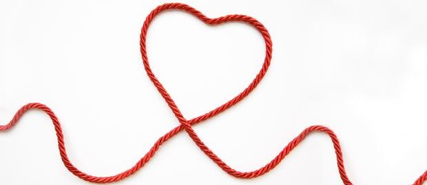 Das Herz – Motor unseres Körpers