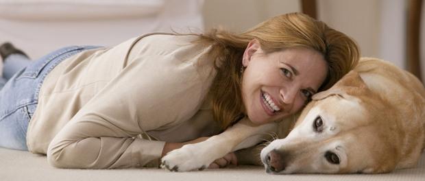 Haustier-Ratgeber