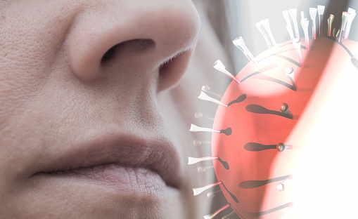 Abbildung Infektionsweg Nase