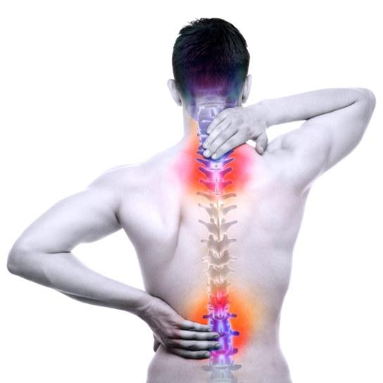 Rückenschmerzen – Ursachen & Übungen im Überblick